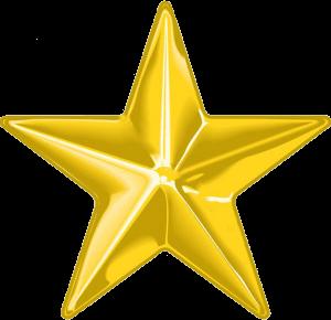 Gold Star Instructor